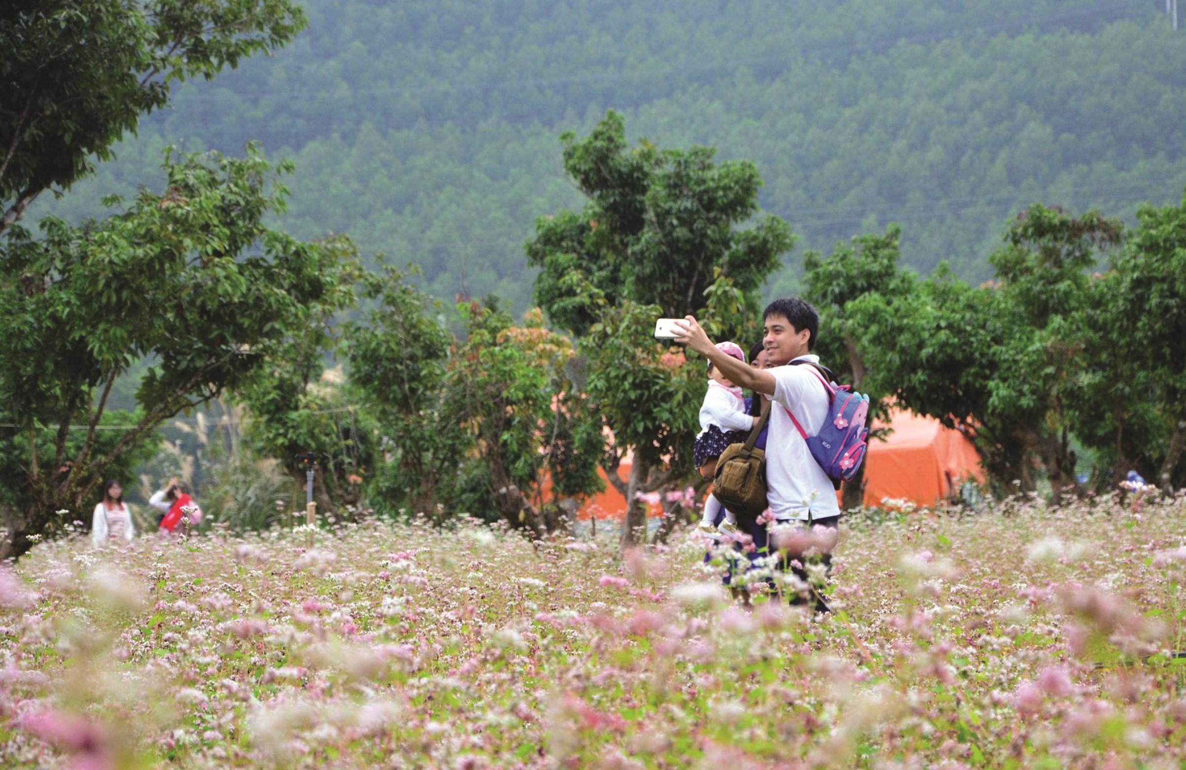 Điểm du lịch thiên đường hoa Quảng La đem lại nhiều việc làm cho đồng bào dân tộc Dao