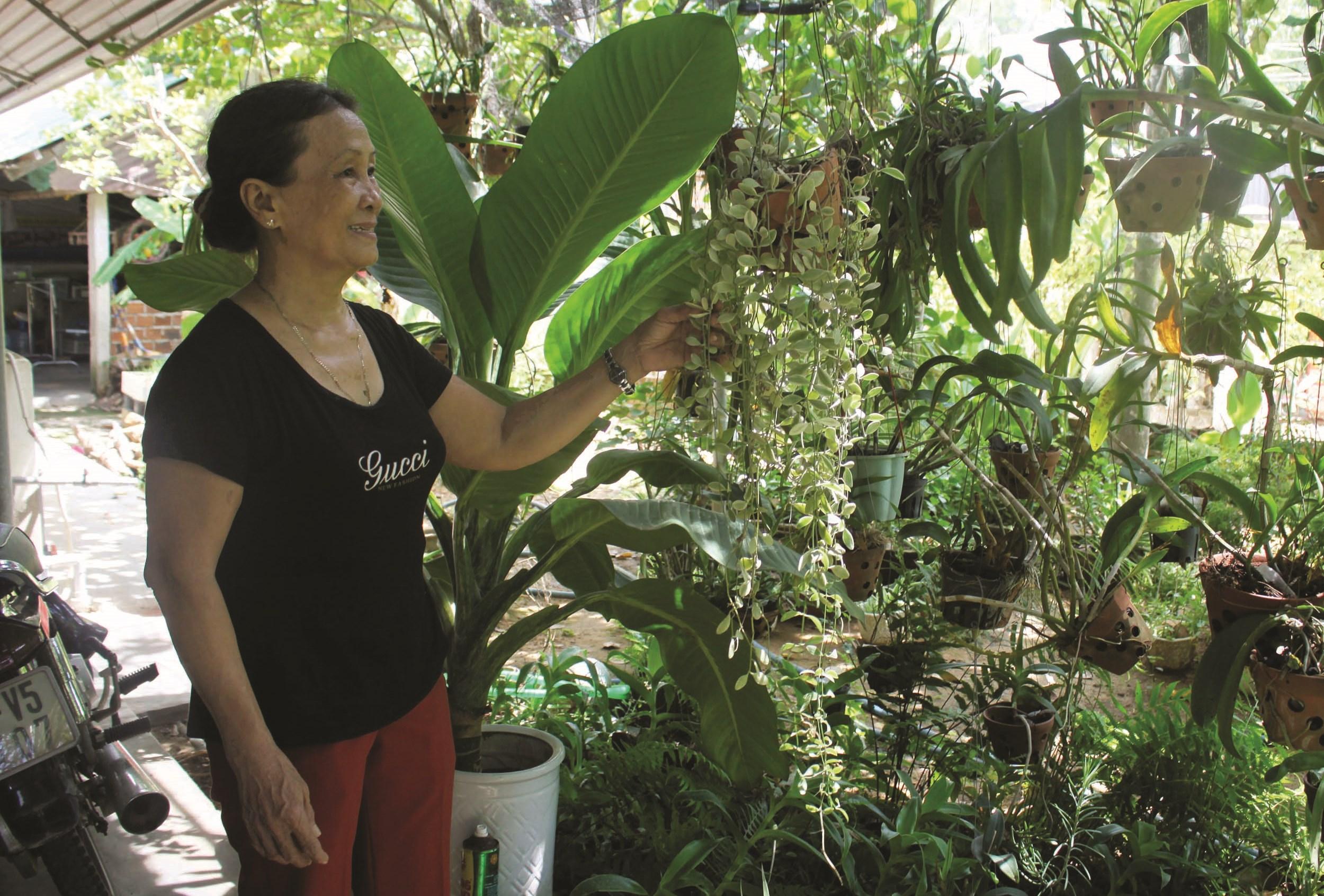 Bà Trần Thị Lự, Chi hội trưởng Chi hội Phụ nữ thôn Thế Lợi, xã Tịnh Phong, huyện Sơn Tịnh, Quảng Ngãi, đang chăm sóc cây trong vườn nhà