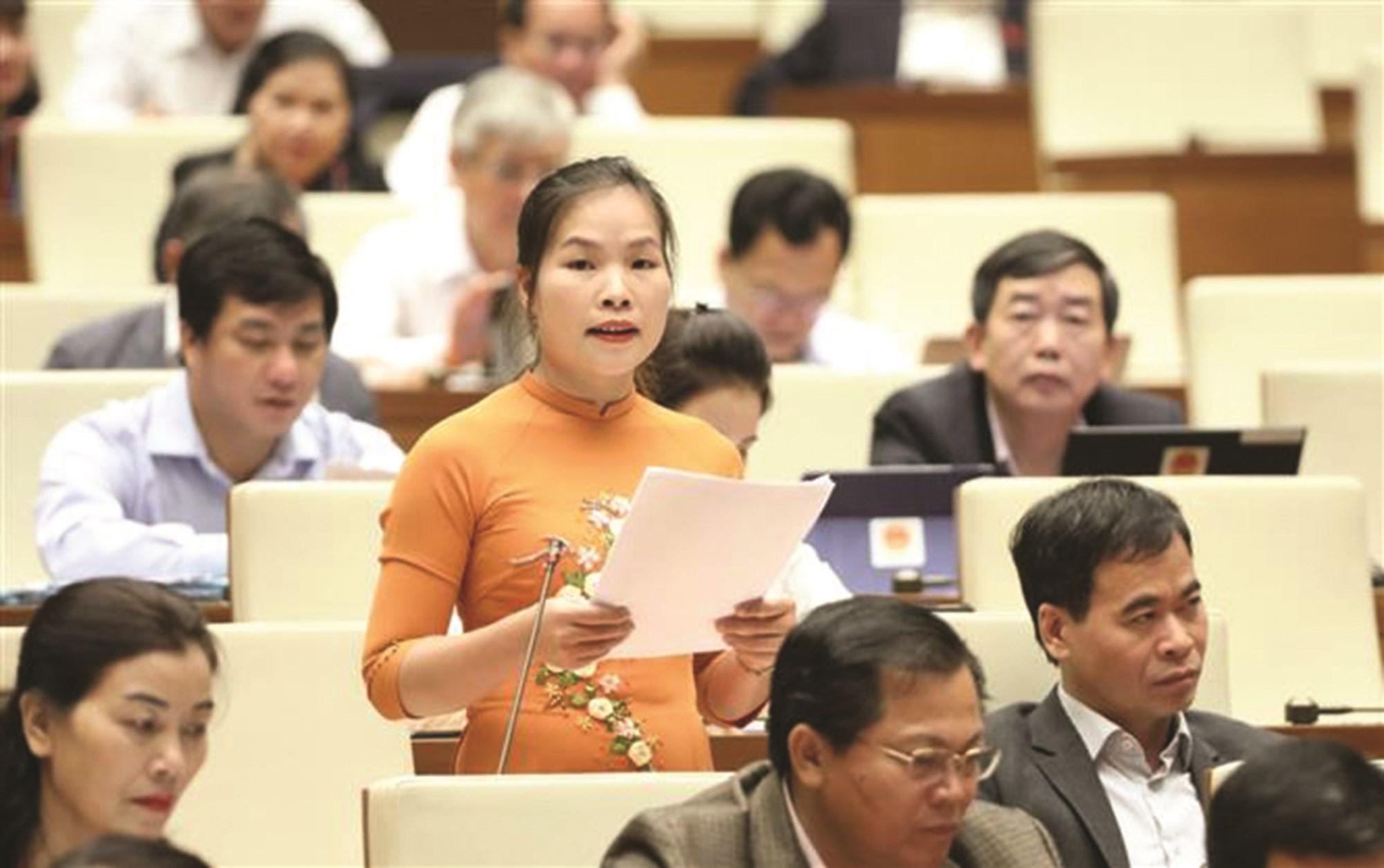 Đại biểu Quốc hội đề xuất giải pháp phát triển vùng đồng bào DTTS&MN 2