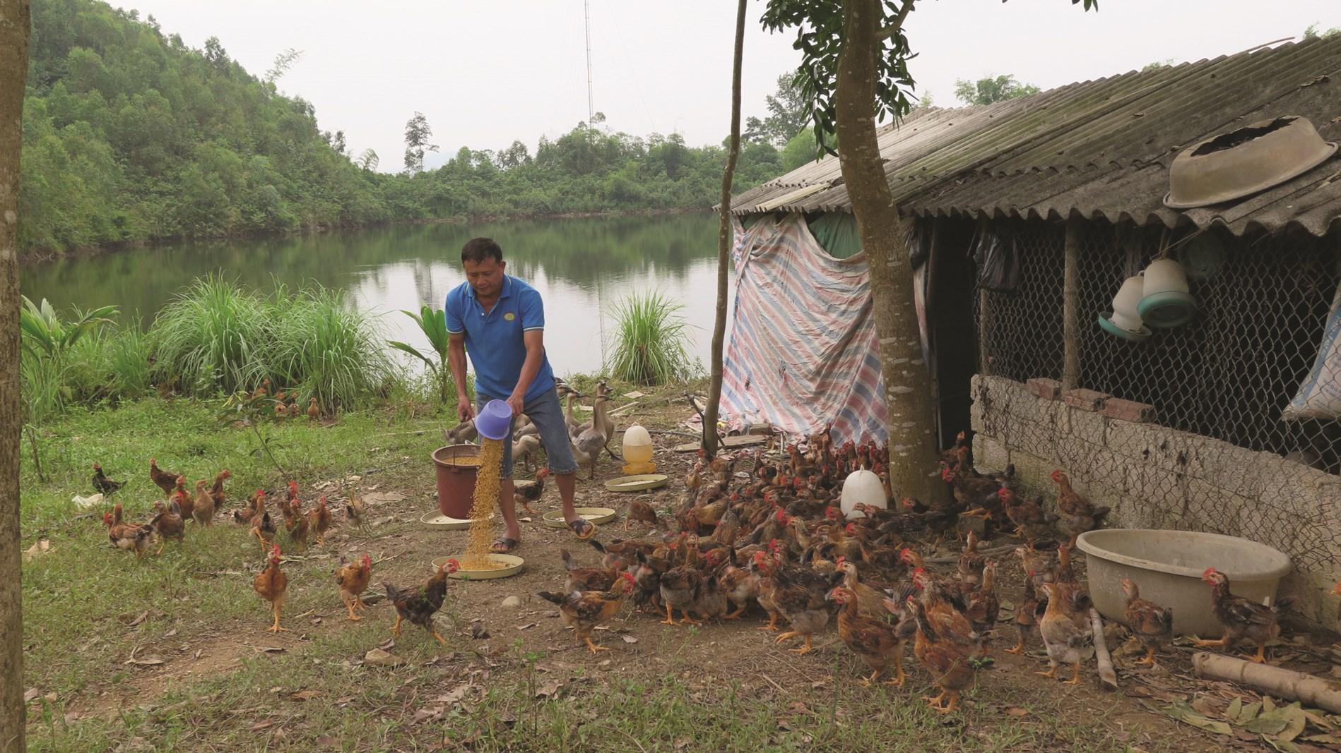 Bà con được tập huấn kỹ thuật áp dụng vào chăn nuôi, mang lại hiệu quả kinh tế cao.