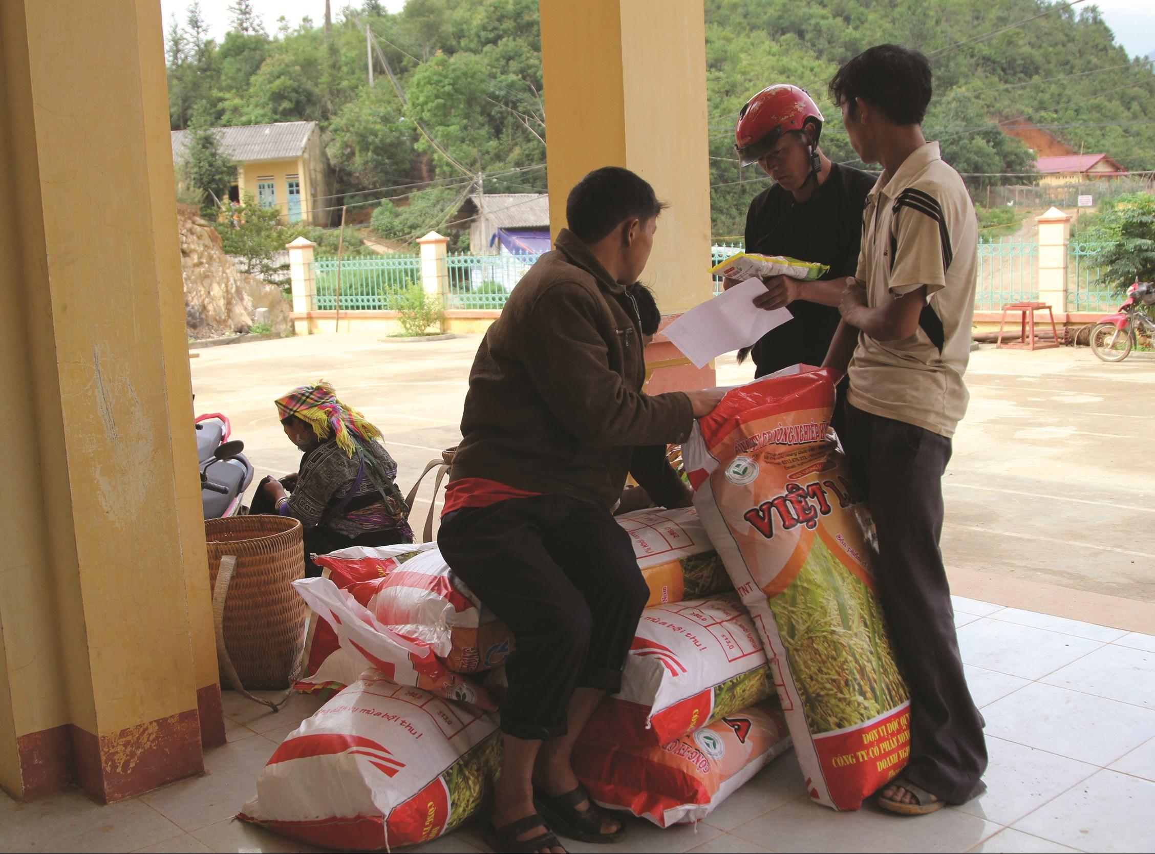 Người dân phấn khởi được nhận hỗ trợ giống từ chương trình 135 (ảnh chụp tại xã La Pán Tẩn, huyện Mù Cang Chải).