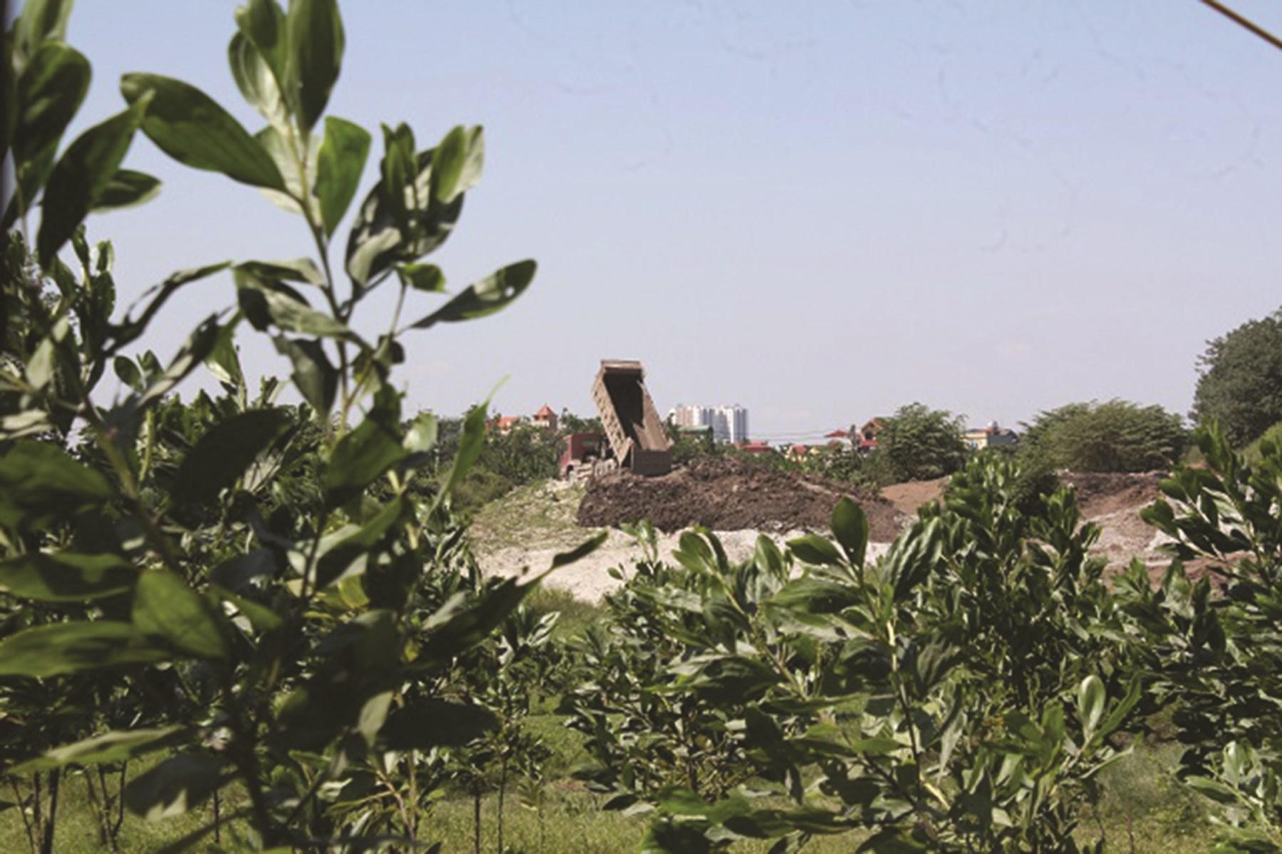 Bãi đất phía sau trường bắn phường Yên Sở đang bị xâm hại nghiêm trọng.