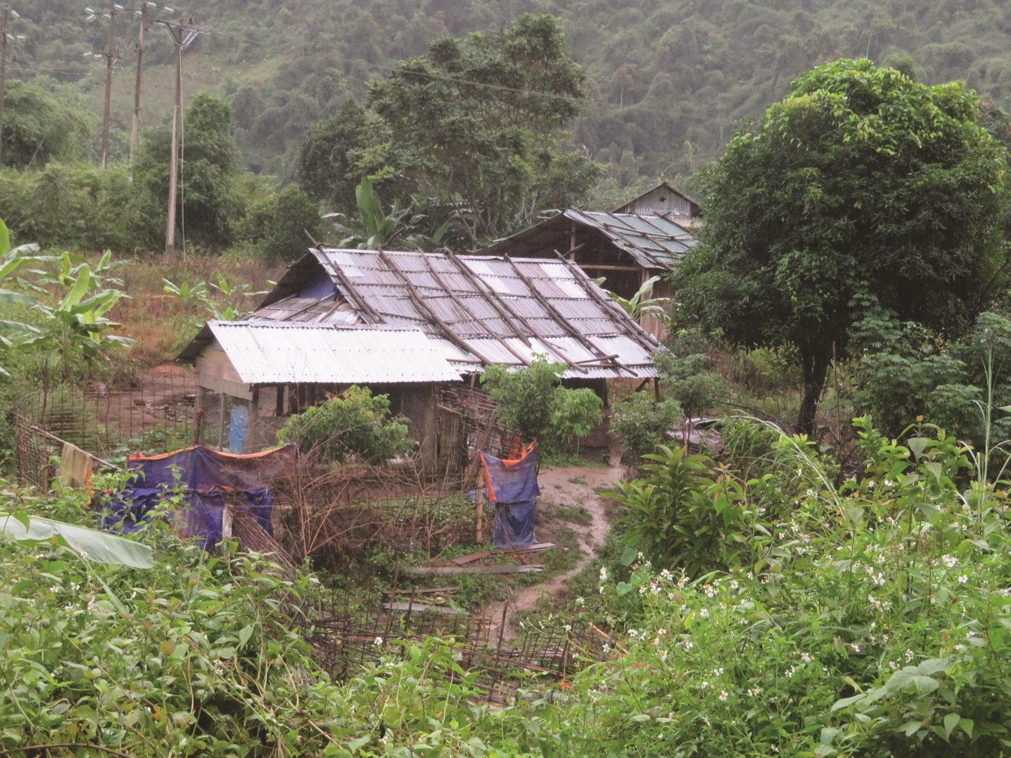 Những ngôi nhà tạm bợ của đồng bào Mảng tại xã Bum Nưa.