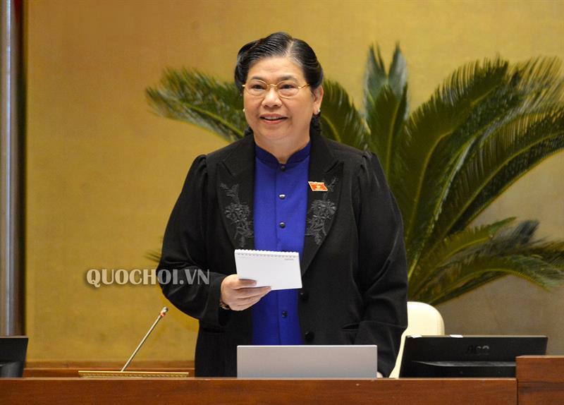 Phó Chủ tịch Thường trực Quốc hội Tòng Thị phóng phát biểu kết luận phiên họp.
