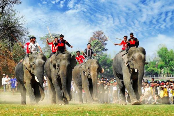 Đua voi là một trong những lễ hội quan trọng trong hệ thống các lễ hội cổ truyền của đồng bào các dân tộc Tây Nguyên.