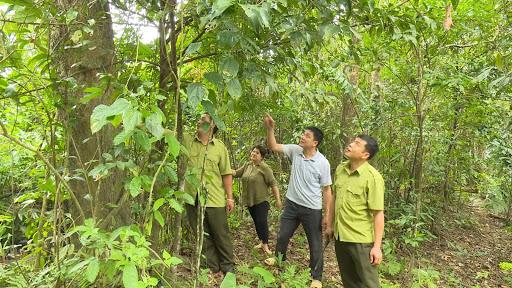 Cán bộ cùng người dân cùng nhau tuần tra bảo vệ rừng.