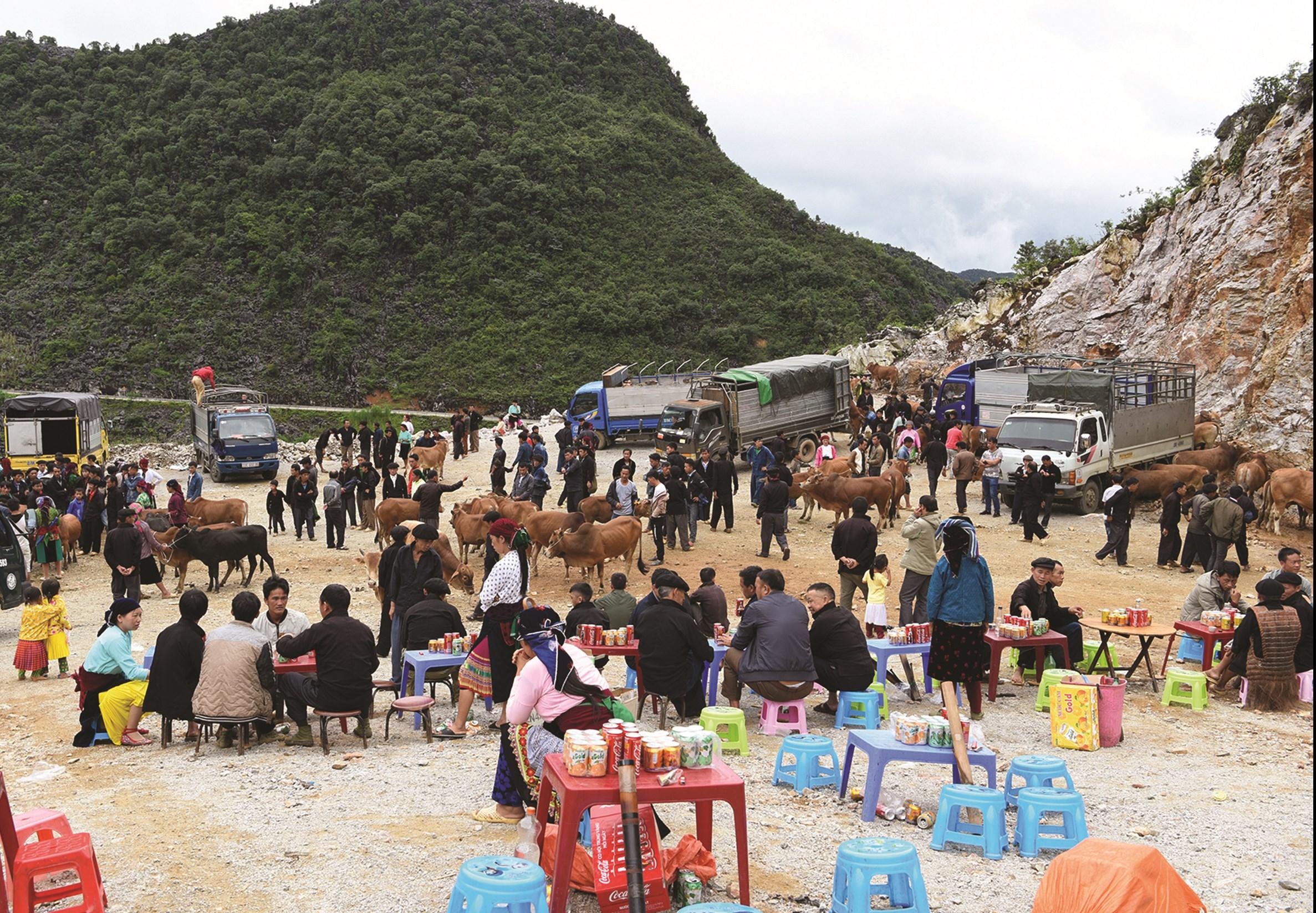 Khu bán gia súc ở Chợ phiên Sà Phìn, huyện Đồng Văn, Hà Giang