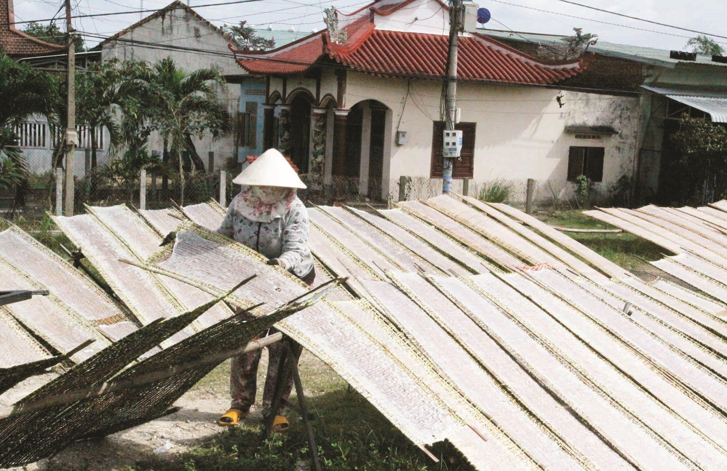 Người dân làng nghề bánh tráng Trường Cửu, tranh thủ những ngày nắng để phơi bánh