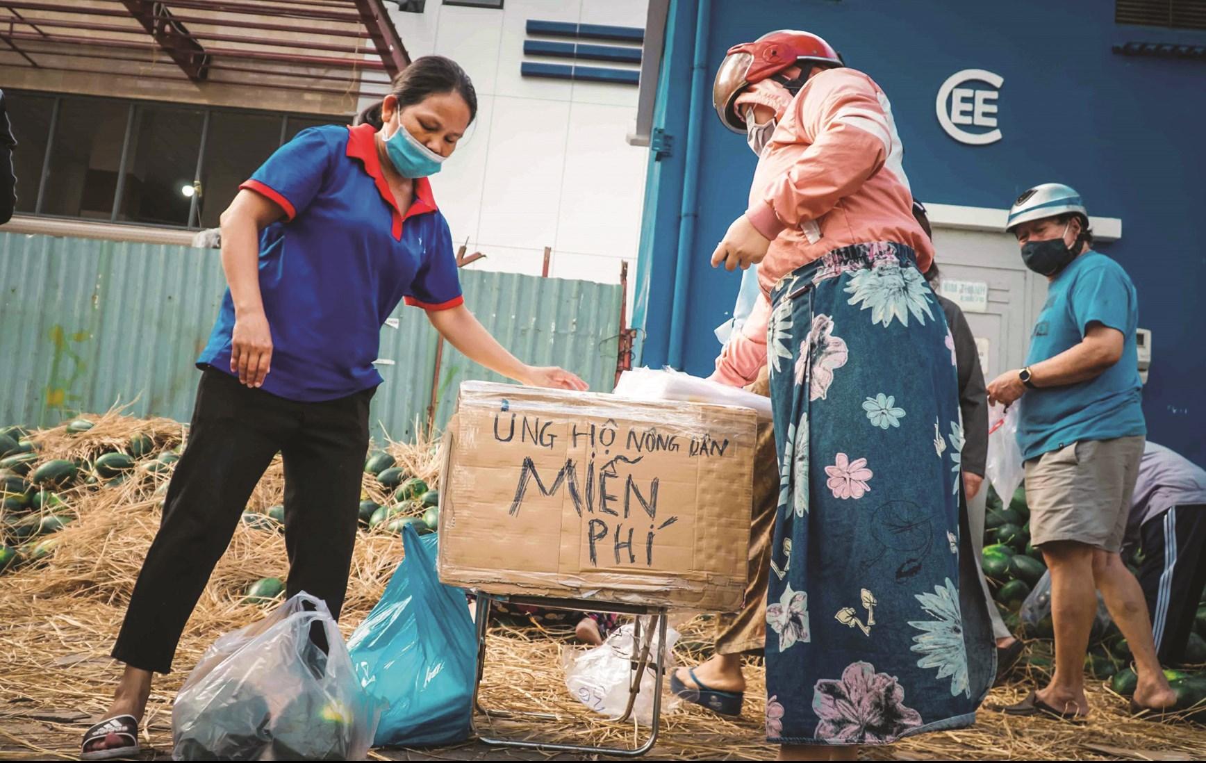 Người dân phát dưa hấu miễn phí ở TP. Hồ Chí Minh