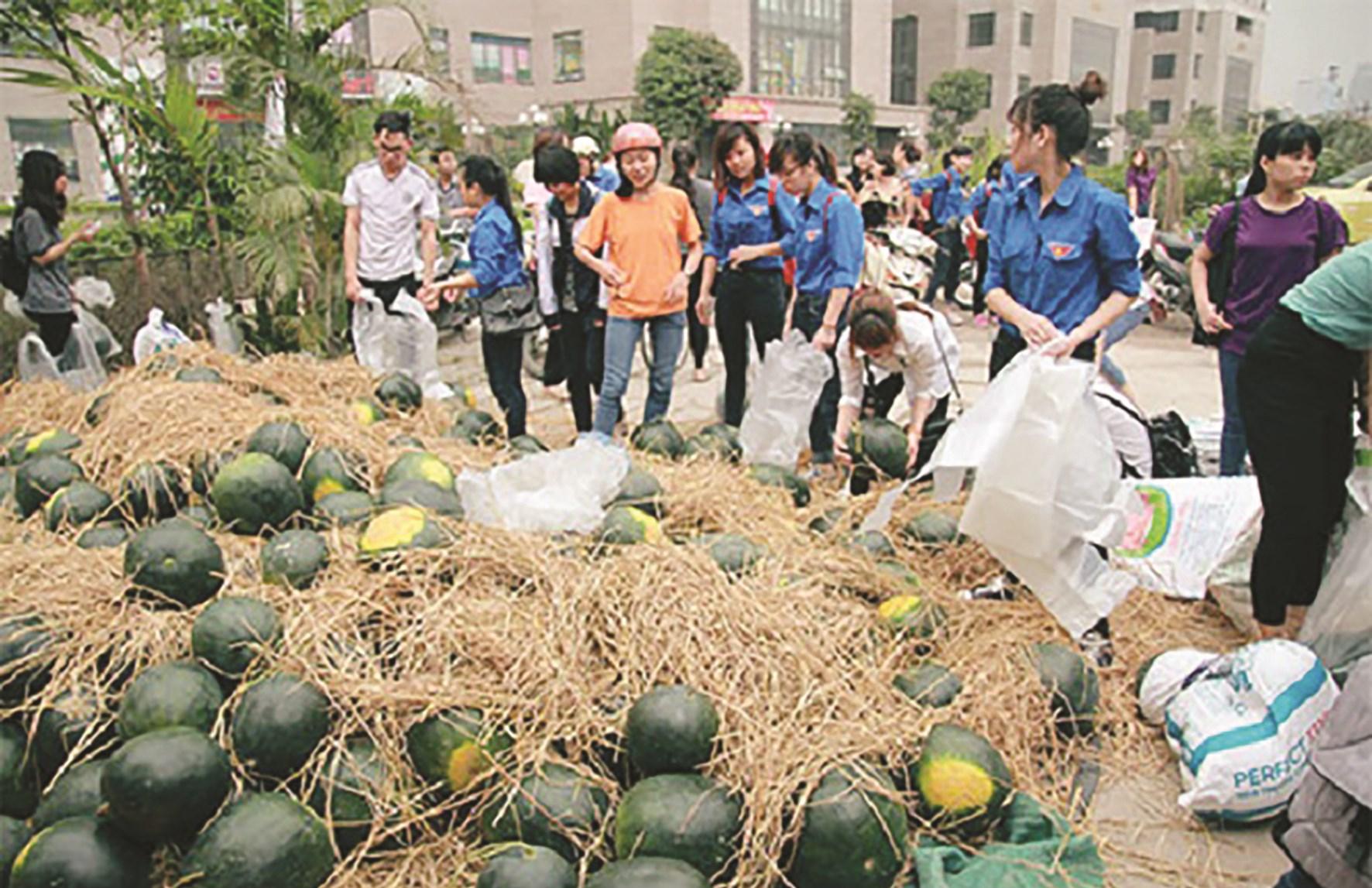 """Khó khăn trong tiêu thụ nông sản thời Covid-19 sẽ giúp Việt Nam nhìn nhận lại trong việc xây dựng nền nông nghiệp tự chủ với tầm nhìn dài hạn .(Trong ảnh: Người dân """"giải cứu"""" dưa hấu). Ảnh tư liệu"""