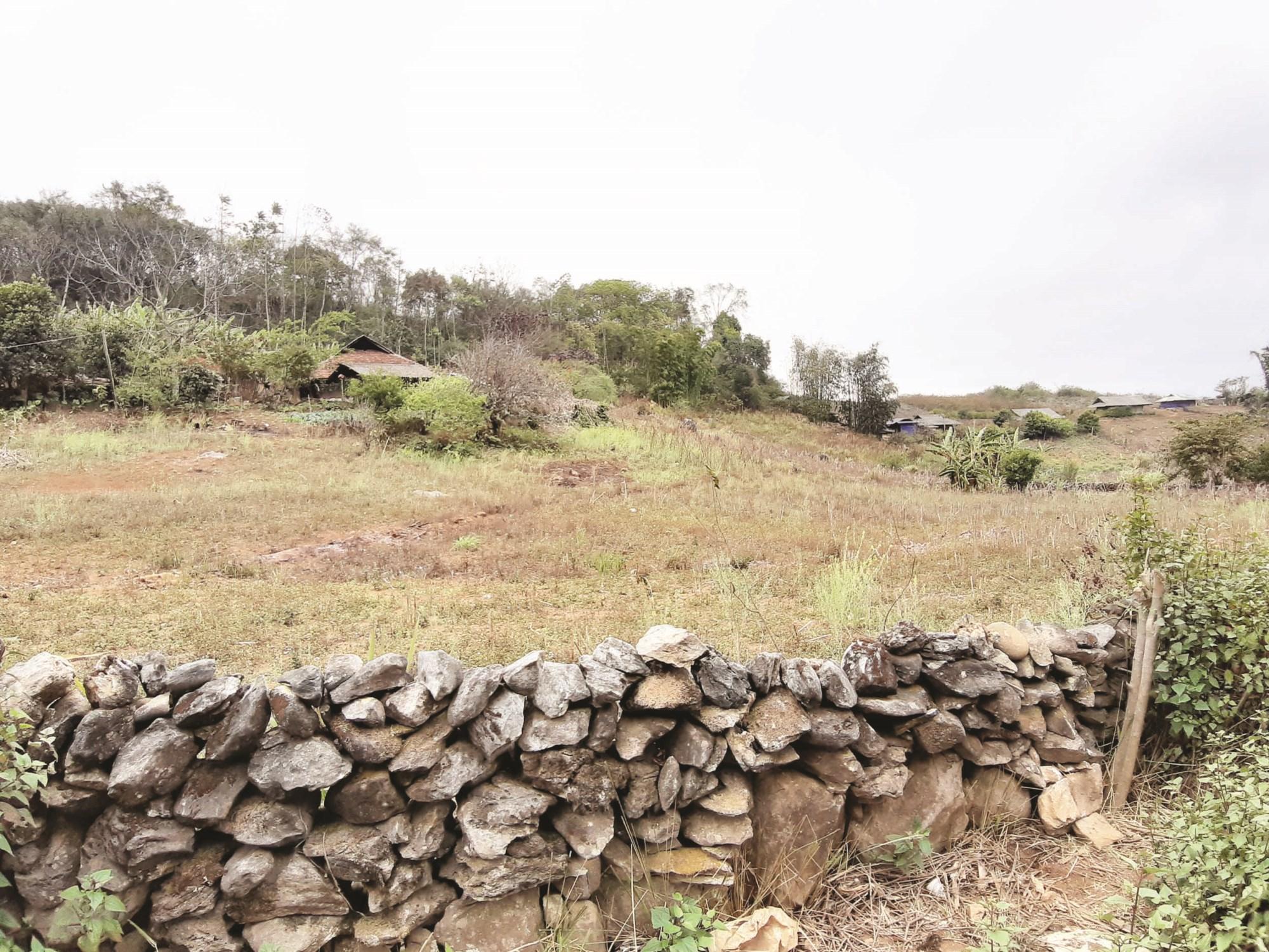 Những mảnh nương được phân định ranh giới đơn giản chỉ bằng những hàng rào đá thô sơ ở vùng cao tỉnh Điện Biên.