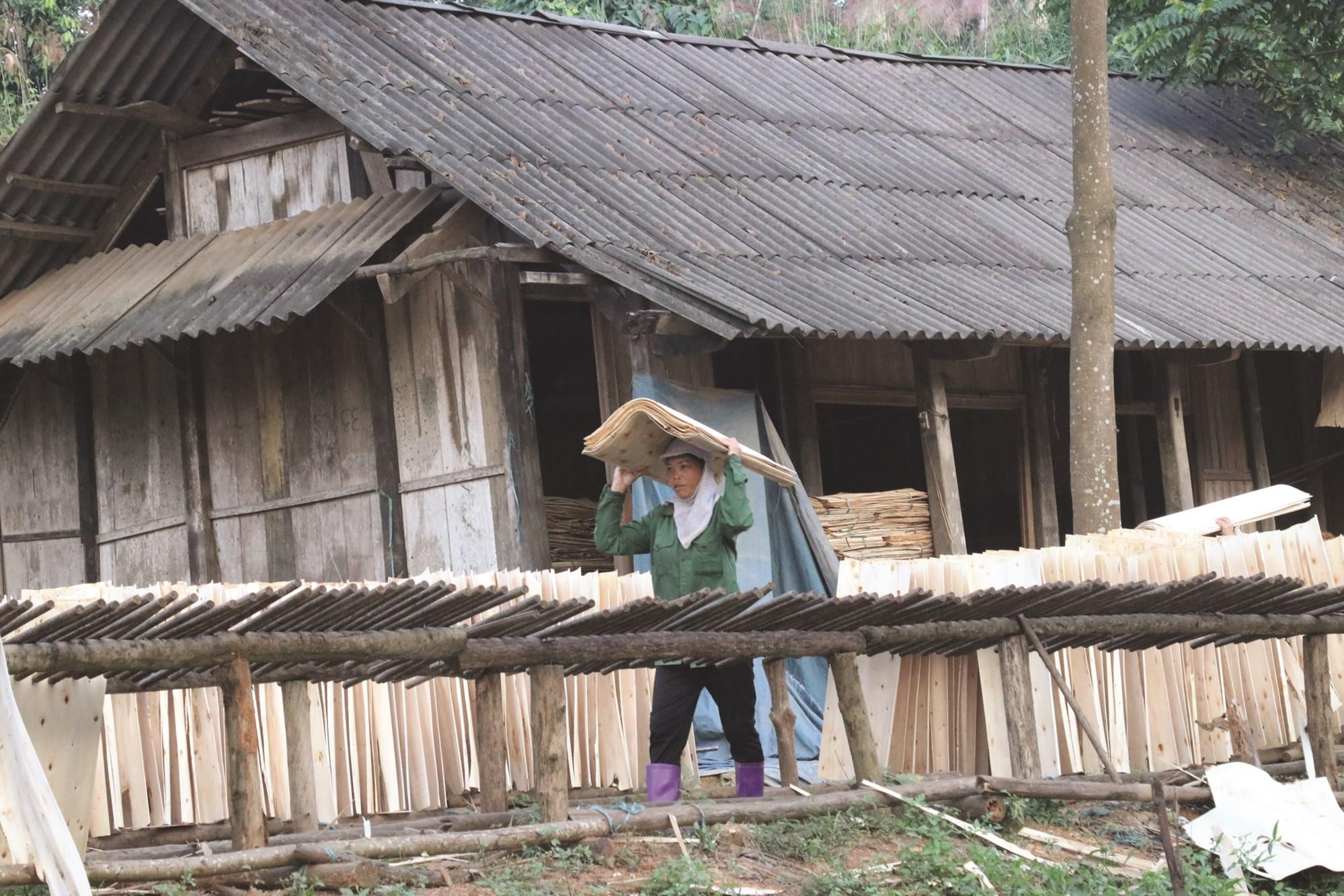 Ở Yên Bái, nhiều lao động chuyển sang sản xuất gỗ ép chuyên nghiệp cho thu nhập khá.