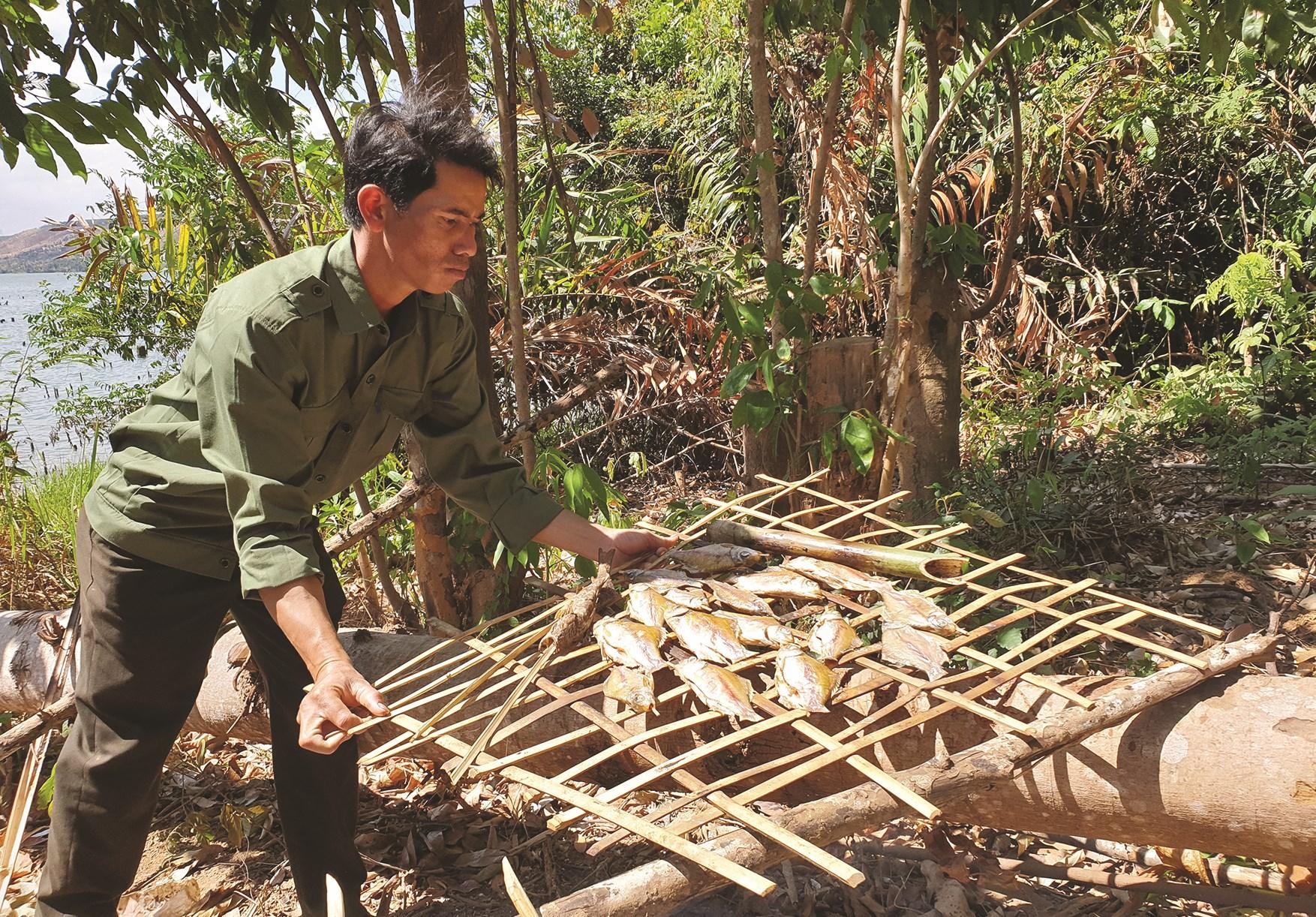 Cá được đánh bắt dưới sông, phục vụ cho bữa ăn hằng ngày của các cán bộ và người dân nhận khoán chăm sóc bảo vệ rừng