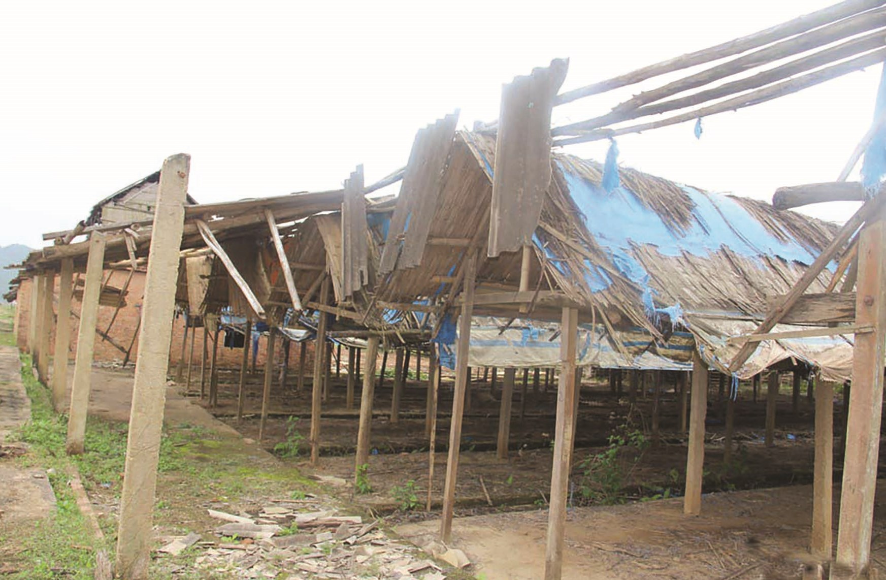 Hàng trăm lò gạch và hàng chục ha đất của làng ngói Cừa bỏ hoang nhiều năm nay