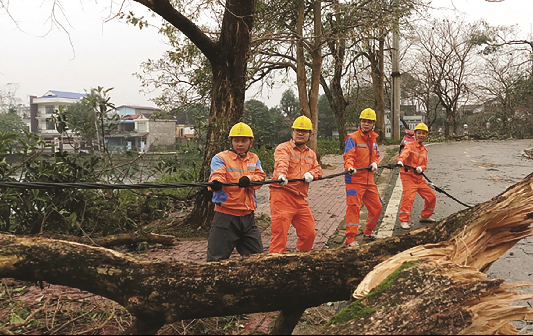 Công ty Điện lực Thái Bình tích cực sửa chữa điện, khắc phục sự cố sau thiên tai.