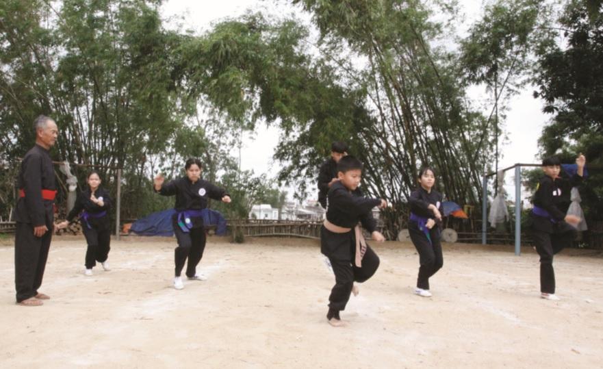 Đề án bảo tồn và phát huy võ cổ truyền Bình Định giai đoạn 2016 - 2020, đang thúc đẩy phong trào tập luyện võ cổ truyền phát triển