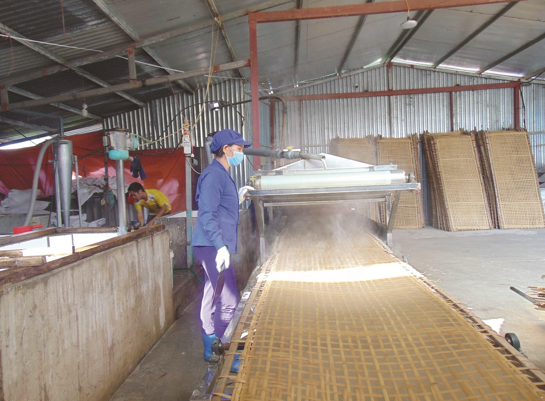 Sản phẩm miến dong Tài Hoan được sản xuất bằng quy trình khép kín.