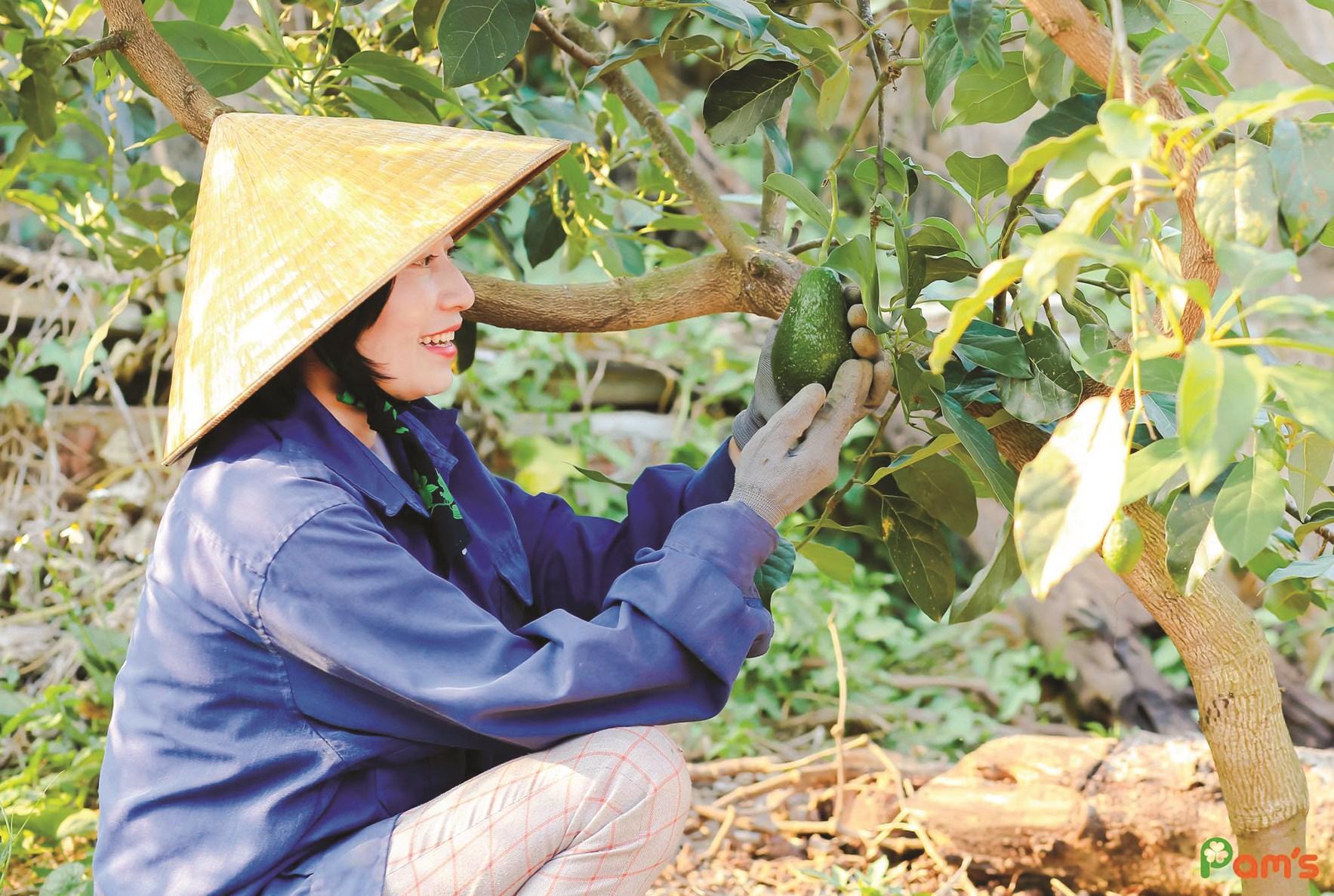 Chị Phạm Thị Thu Hằng mạnh dạn chuyển hướng khởi nghiệp với thương hiệu mỹ phẩm Pam's.