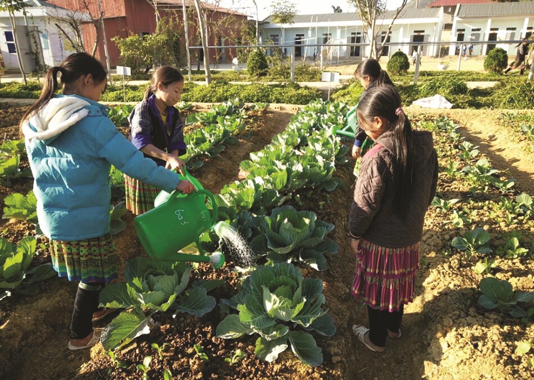Các em học sinh Trường PTDTBT – THCS Tà Mung chăm sóc vườn rau sau mỗi buổi chiều tan học