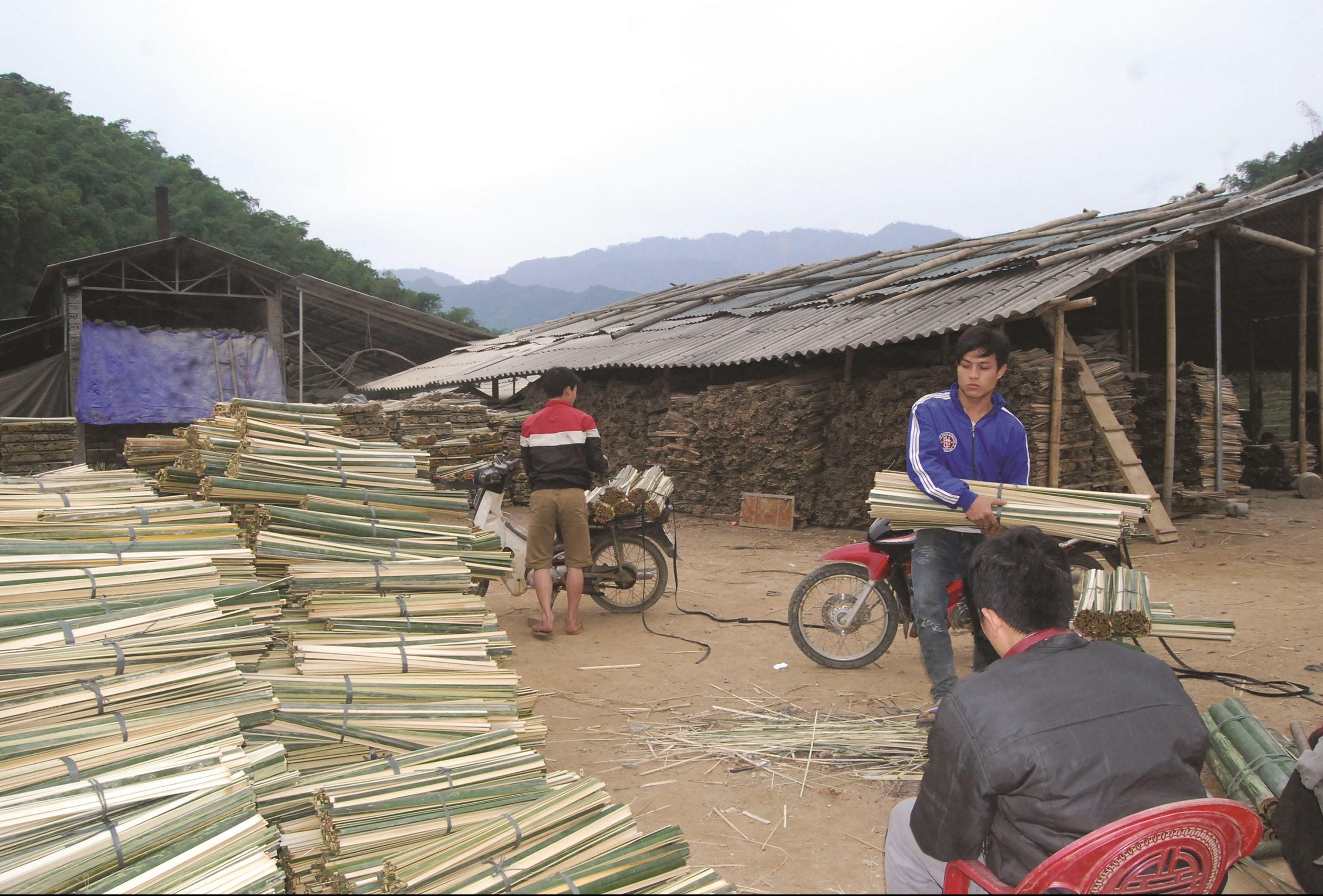 Quan Sơn có lợi thế về phát triển rừng, trong đó nứa, luồng là nguồn nguyên liệu chính, giúp người dân nâng cao thu nhập thoát nghèo.