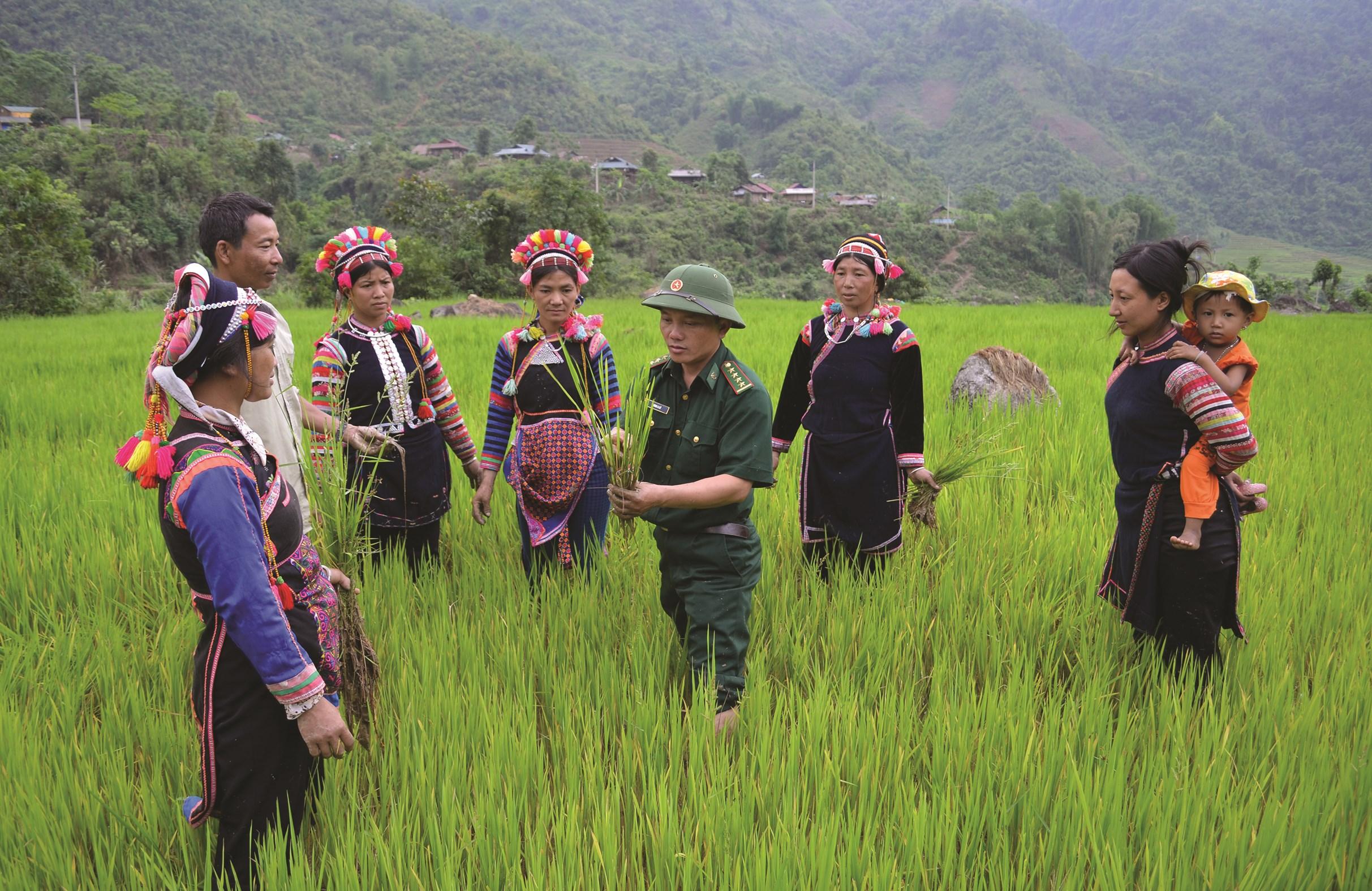 Cán bộ Đồn Biên phòng Thu Lũm hướng dẫn đồng bào dân tộc Hà Nhì xã Thu Lũm, huyện Mường Tè (Lai Châu) kỹ thuật canh tác lúa nước