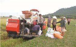 Yên Thành (Nghệ An): Tạo sức bật nhờ cơ giới hóa nông nghiệp