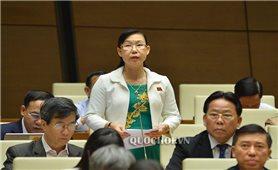 Kỳ họp thứ 8, Quốc hội khóa XIV: Nâng cao hơn nữa chất lượng, hiệu quả công tác xây dựng pháp luật