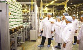 """Công ty Cổ phần Sữa Việt Nam: Hiện thực hóa """"Giấc mơ sữa Việt"""" vươn ra thế giới"""