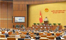 Kỳ họp thứ 8, Quốc hội khóa XIV: Tăng cường phòng chống thiên tai trong tình hình mới
