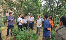 Người có uy tín ở Sơn La: Khẳng định vai trò nòng cốt ở cơ sở