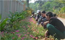 Xây dựng nông thôn mới ở khu vực miền núi Quảng Ngãi: Thuận lợi có, khó khăn còn