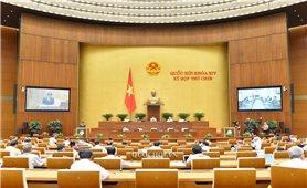 Kỳ họp thứ 9, Quốc hội khóa XIV: Không đề xuất nội dung giám sát chuyên đề vào Chương trình giám sát năm 2021 của Quốc hội