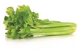 Công dụng từ cây rau cần tây