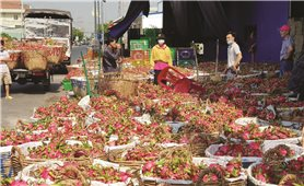 """Sản xuất nông nghiệp trong điều kiện dịch Covid - 19: """"Phép thử"""" cho sự phát triển bền vững"""
