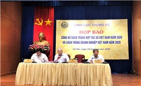Công bố Sách trắng Hợp tác xã và Doanh nghiệp Việt Nam năm 2020