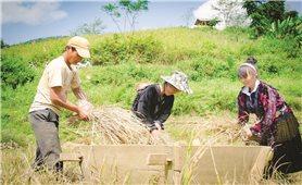 Thực hiện hiệu quả Chính sách dân tộc: Đời sống người dân được nâng cao