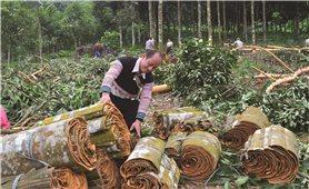 Hiệu quả công tác dân tộc ở Yên Bái