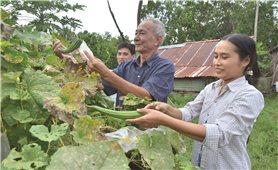 Cải thiện dinh dưỡng cho đồng bào dân tộc Khmer