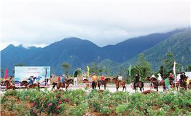 Đẩy mạnh thị trường nội địa: Kích cầu cho ngành Du lịch Việt Nam