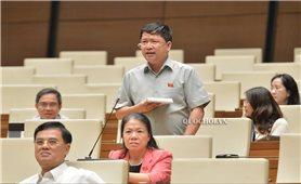 Kỳ họp thứ 9, Quốc hội khóa XIV: Cần tiếp tục miễn thuế sử dụng đất nông nghiệp
