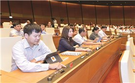 Kỳ họp thứ 9, Quốc hội khóa XIV: Thông qua Nghị quyết chương trình giám sát của Quốc hội năm 2021