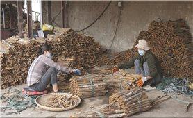 Bảo Thắng (Lào Cai): Dồn lực về đích huyện nông thôn mới