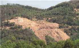 Công ty CP Khoáng sản Thiên Đức (Bình Định): Chưa hoàn thành thủ tục vẫn ngang nhiên khai thác khoáng sản