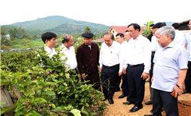 Phó Thủ tướng Thường trực thăm hộ đồng bào dân tộc Sán Dìu làm kinh tế giỏi