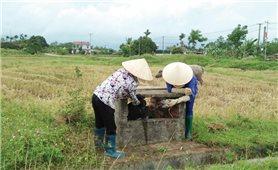 Quảng Ngãi: Nông dân tích cực bảo vệ môi trường