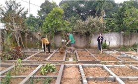 Nhiều khó khăn trong xây dựng vườn mẫu