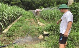 Ô nhiễm môi trường từ một trang trại ở Thanh Hóa: Dân từng giờ phải chịu mùi hôi thối, xã bảo chờ ?!