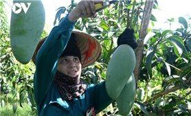 Nông sản Việt tái cơ cấu tập trung cho thị trường trong nước