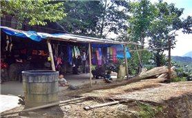 Cây lanh trong đời sống đồng bào dân tộc Mông