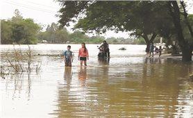 Phòng, chống dịch bệnh trong mùa mưa bão: Không để dịch chồng dịch